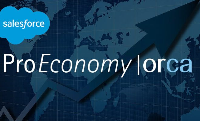 Saleforce CRM Solution for ProEconomy ORCA